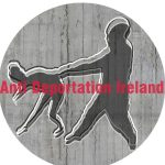 anti deportation ireland